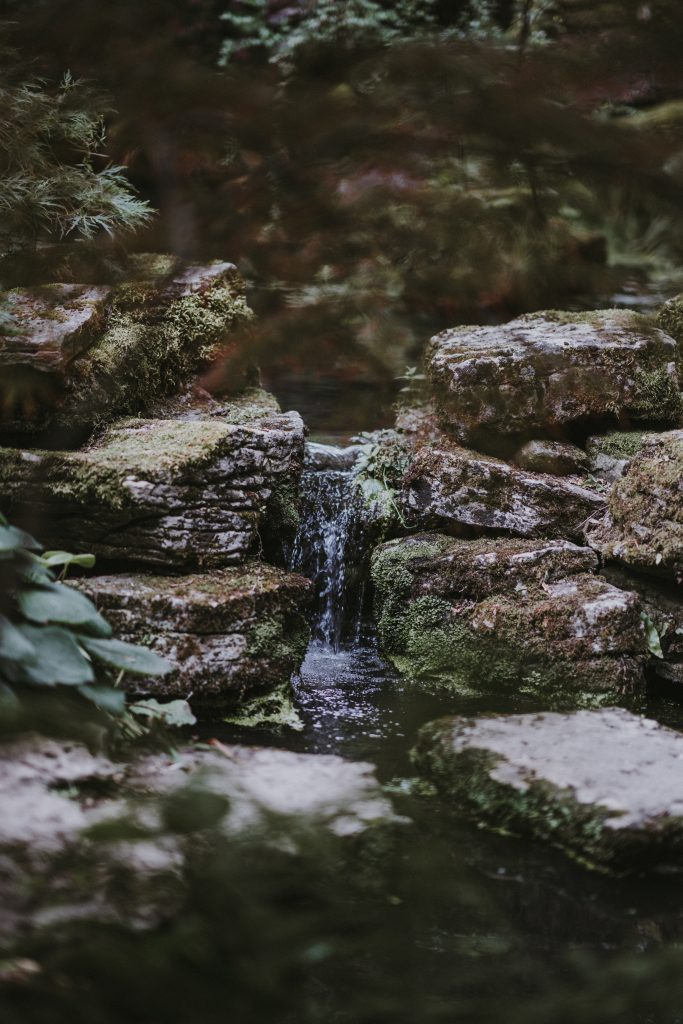 life is always changing just like water flowing through a stream