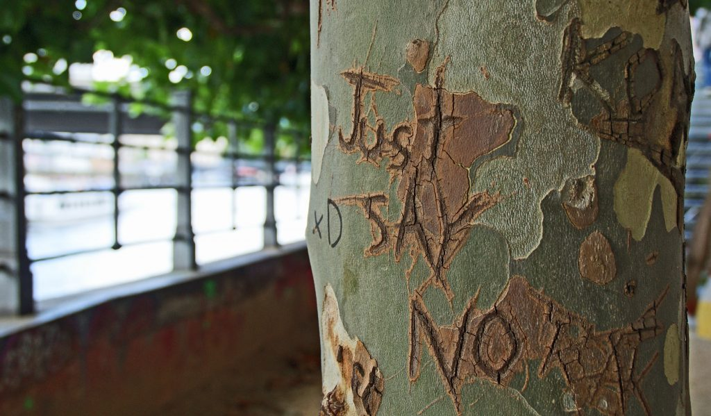 just say no carved on tree - how to improve self confidence